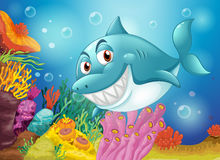 A big fish near the coral reefs. Illustration of a big fish near the coral reefs Stock Photo