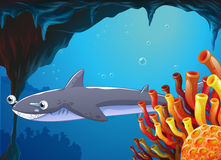 A big fish near the coral reefs. Illustration of a big fish near the coral reefs Royalty Free Stock Image