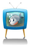 A big fish in the television Royalty Free Stock Images