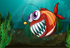 A big fish under the sea Stock Image