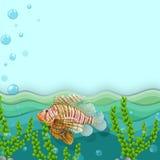 A big fish under the sea. Illustration of a big fish under the sea Stock Photos