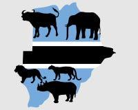 Big Five Botswana. Detailed and colorful illustration of big Five Botswana Stock Photo