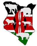 Big Five Kenya Royalty Free Stock Photo