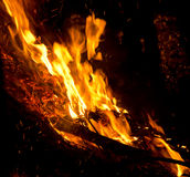 Big flame in the night Stock Photos