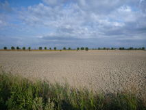 Big flat brown field in the autumn Royalty Free Stock Photography