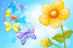 A big flower with butterflies Royalty Free Stock Images