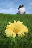 Big flower with couple in love in the background Royalty Free Stock Photography