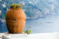 Big flower pitcher against a beautiful landscape. In southern Italy Stock Photo
