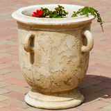 Big flower pot Stock Images