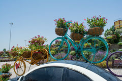 Big flower pots shaped bicycles on the top of the car. Roof Stock Photos