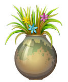 A big flowervase with flowering plants Royalty Free Stock Photo