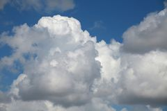 Clouds. Big, fluffy, billowy cumulus clouds gather in the Florida skies Royalty Free Stock Images