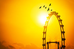 Big flyer and birds flying in the sunset sky, freedom and travel Royalty Free Stock Images