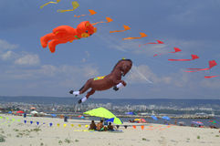 Big flying animals kites Royalty Free Stock Images