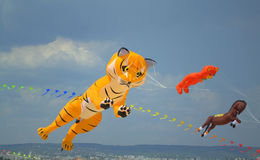 Big flying animals kites Stock Photos