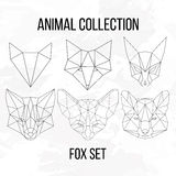 Big fox set Royalty Free Stock Image