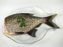Big fresh fish bream. On glass plate royalty free stock photo
