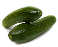 Big fresh green cucumber isolated. On white stock photography