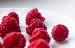 Raspberries on a white saucer close up. Big fresh juicy raspberries on a white saucer close up, selected focus Royalty Free Stock Image