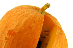 Big fresh pumpkin Stock Image