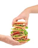 Big fresh sandwich in hands. Royalty Free Stock Photography