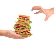 Big fresh sandwich in hands. Stock Photo