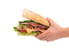 Big fresh sandwich in hands. Stock Images