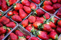 Big fresh strawberries in plastic container. closeup Royalty Free Stock Image