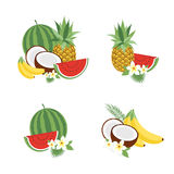 Big fruit vector set. Modern flat design. Isolated objects. Fruit icons. Big fruit vector set. Modern flat design. Isolated objects. Fruit icons Royalty Free Stock Photos
