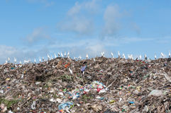 Big garbage heap Stock Photo