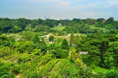 Big garden in the city Stock Photography