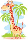 The big giraffe Stock Photography