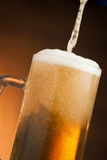 Big glass with handle filled with fresh beer with a lot of foam Stock Images