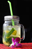 Big glass of mojito with orchid flower on black Stock Photos