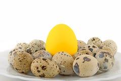 Big Gold egg Stock Photos