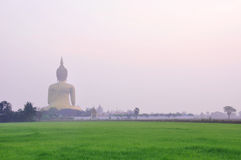 Big Golden Buddha Royalty Free Stock Images