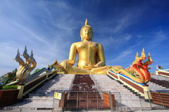 Big golden buddha with blue sky. Stock Image