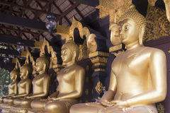 Big golden Buddha statue in row Stock Image