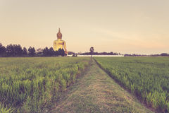 Big golden buddha statue in Thailand Royalty Free Stock Photos