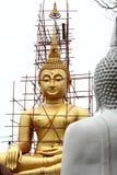 Big golden Buddha statue. Under construction Stock Image