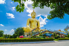 Big golden Buddha statues stock photography