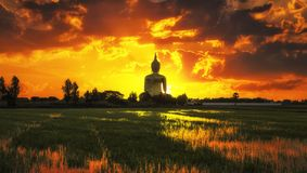 The Big Golden Buddha on sunrise Stock Photography