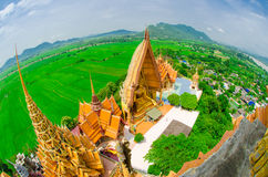 Big golden Buddha in Wat Tham Suea temple with green background Royalty Free Stock Photo