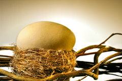 Big golden egg in nest Royalty Free Stock Image