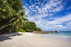 Paradise beach on the seychelles 24 Stock Photography
