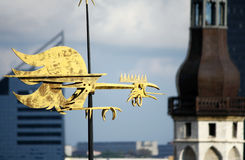 Big golden weathercock in Tallinn Stock Photography