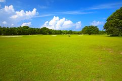 Big golf field. In a sunny day Stock Images