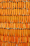 Big Grains of ripe corn background Stock Images