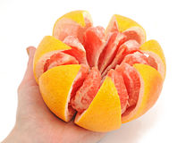 Big grapefruit Stock Image