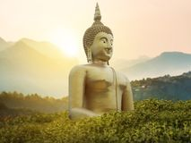 Big great powerful Buddha statue in gold color in the park Royalty Free Stock Photo